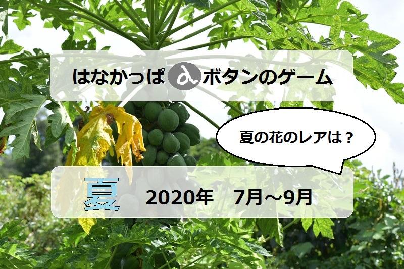 はなかっぱタイトルアイキャッチ2020夏